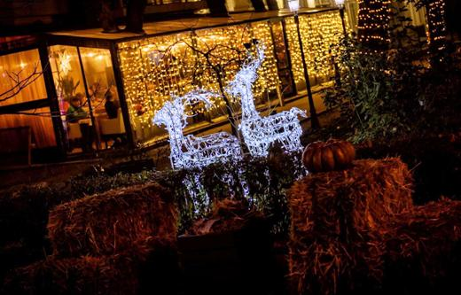 120281629 В Одессе выбрали самую красивую новогоднюю витрину